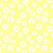 White_daisies_on_yellow_shop_thumb