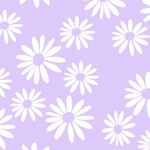 White Daisies on Lilac