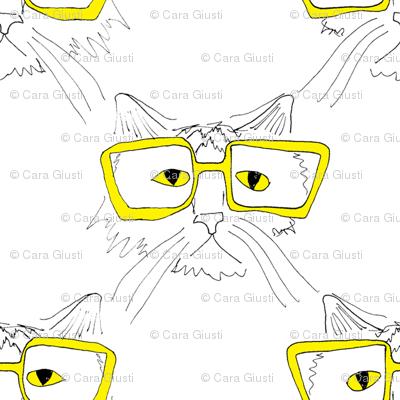 geeky cat