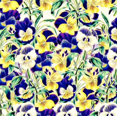Pretty Pansies fabric by whimzwhirled on Spoonflower - custom fabric