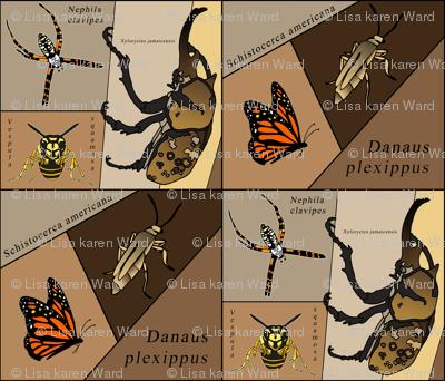 entomology geek