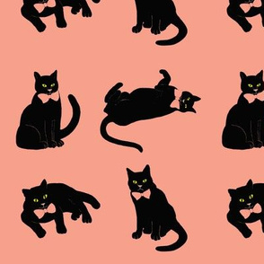 Black cat on coral pink // Summer Coral