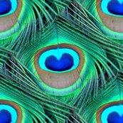 Rrrrr2012737_rrrpeacock_feathers_shop_thumb