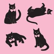 Rrrrrrrrspoonflower_turquoise_cats_finished_shop_thumb