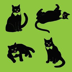 Halloween Black cats on green