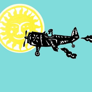 Day of the Dead Plane Flies in front of the Sun