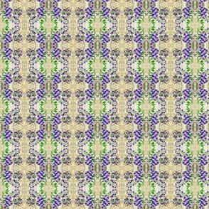 Lavender_Bells