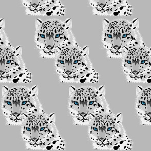 SNOW LEOPARD MATES