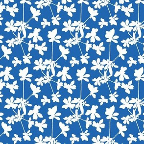 Little Smile - Blue and White
