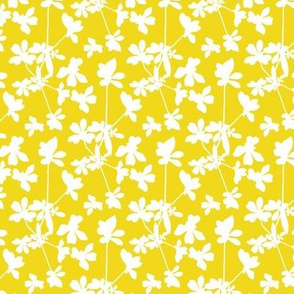 Little Smile - Yellow and White