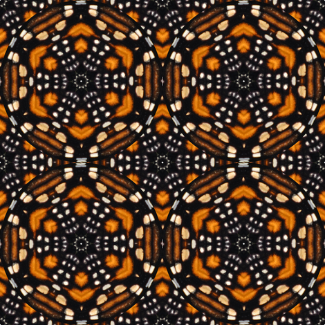 Monarch Butterfly Kaleidoscope fabric by eclectic_house on Spoonflower - custom fabric