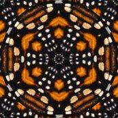 Rrmonarch_kaleidoscope_5122_shop_thumb