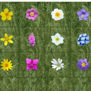 12 Denali National Park Wildflower Quilt Blocks