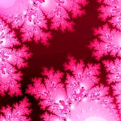 Fractal:  Pink Frost
