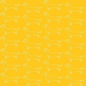 dachshound parade