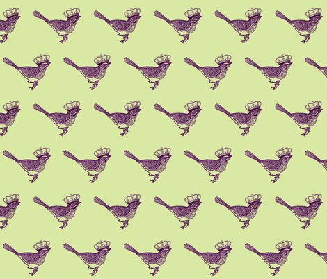 R5665_bird_shop_preview