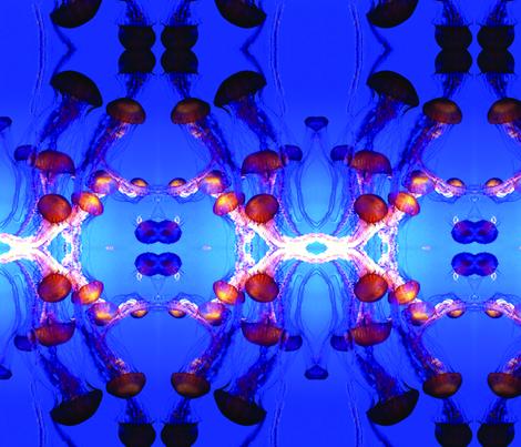 J is for JELLYFISH fabric by occiferbetty on Spoonflower - custom fabric