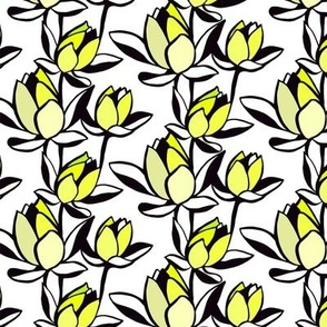 Waterlily Chartruese