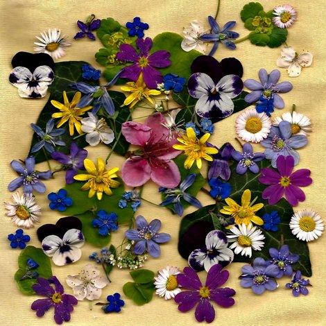 Rrrlitlle_flowers_100_001_ed_shop_preview