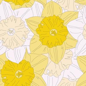 Daffodil Print - Love Never Dies