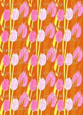 tulip  pink & white