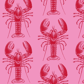 pink lobster-ch