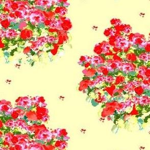 Fields of Geraniums
