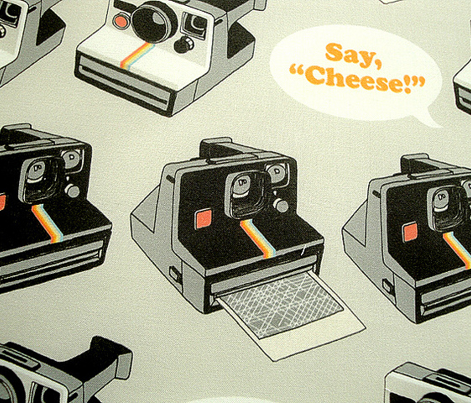 Say Cheese! (Gray) || vintage retro polaroid cameras photography typography text
