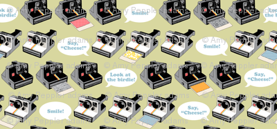 Say Cheese! (Green) || vintage retro polaroid cameras photography typography text