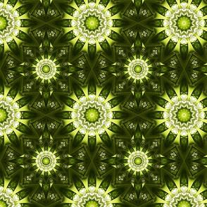 Kaleidoscope 13 - Kick It Up a Notch