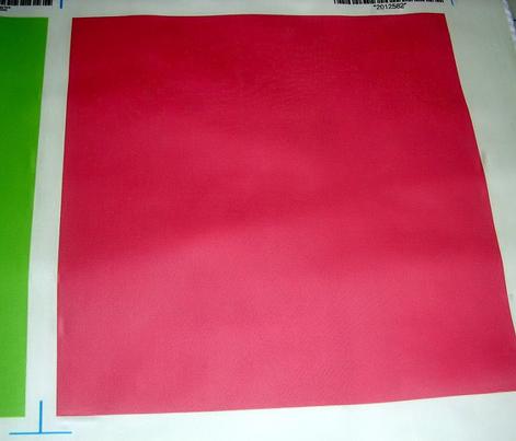watermelon red background