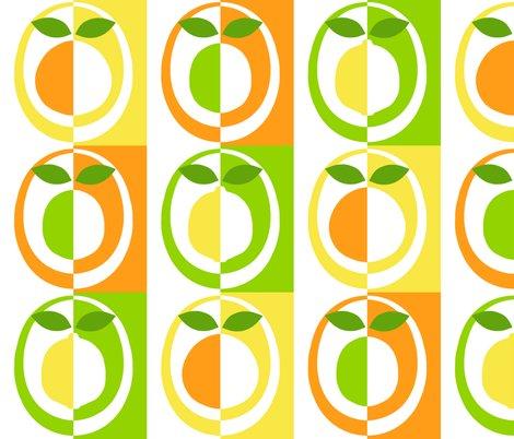 Rrrrrrmod_citrus_shop_preview