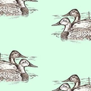 Duck Design