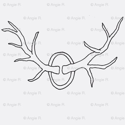 Antlers on White