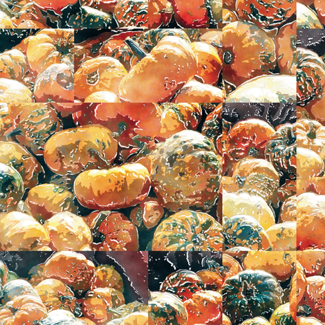 Squash fabric by animotaxis on Spoonflower - custom fabric