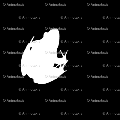 Frogs Silhouette White