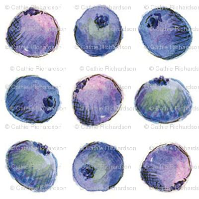 Blueberry Dot