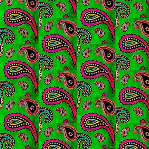 Paisley Watermelon Waves