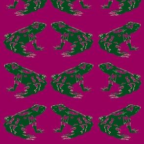 Tree Frog in Magenta