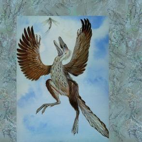 Protoarcheopteryx
