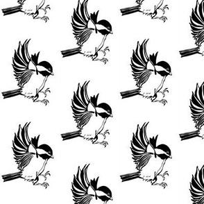 Chickadee 2.25