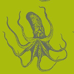 Octopus Green