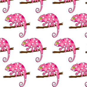 Pink Chameleon