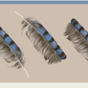 Jaybird I