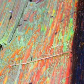 Neon Redwood Grain