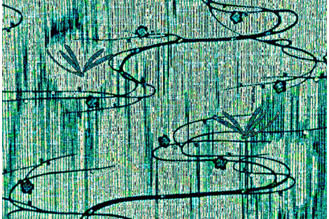 Dragonflies on pond - teal multi-color fabric by materialsgirl on Spoonflower - custom fabric