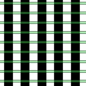 Translucent Green Tubes and Black Webbing