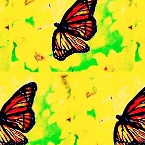 Butterflies are free to fly