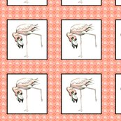 Rflamingo_in_pink_border_copy_shop_thumb