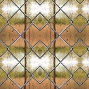 Argyle  Fence